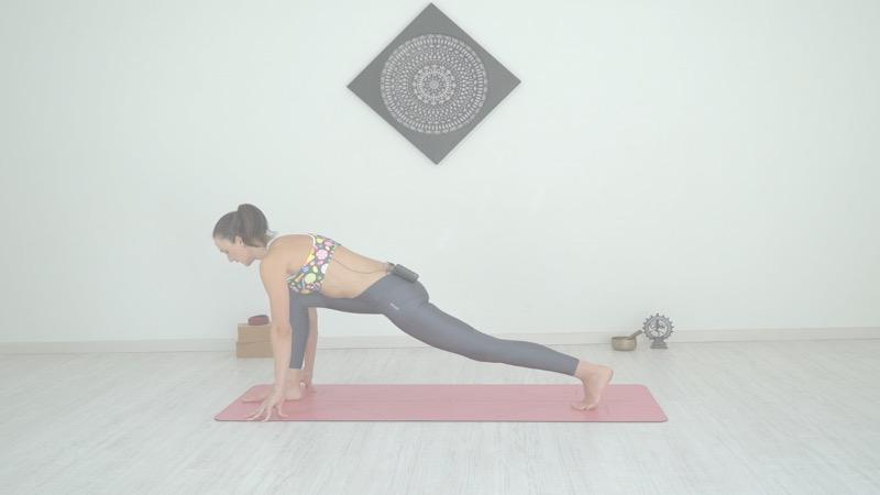 focus sul bacino ana carolina ileck per rhamni scuola di yoga